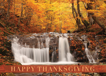 Woodland Waterfall Thanksgiving Card